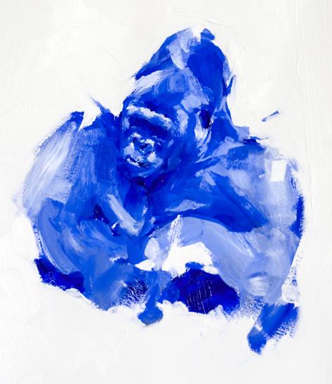 GorilleBleu