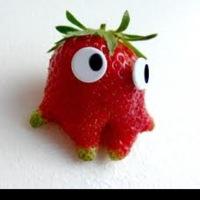 fraisitaa