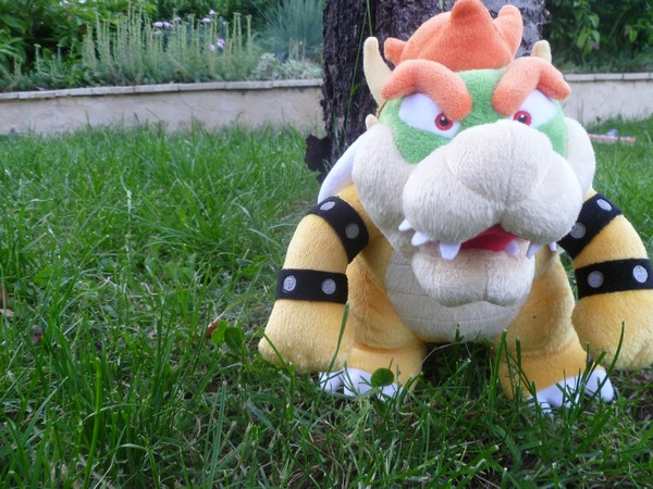 BowserPower