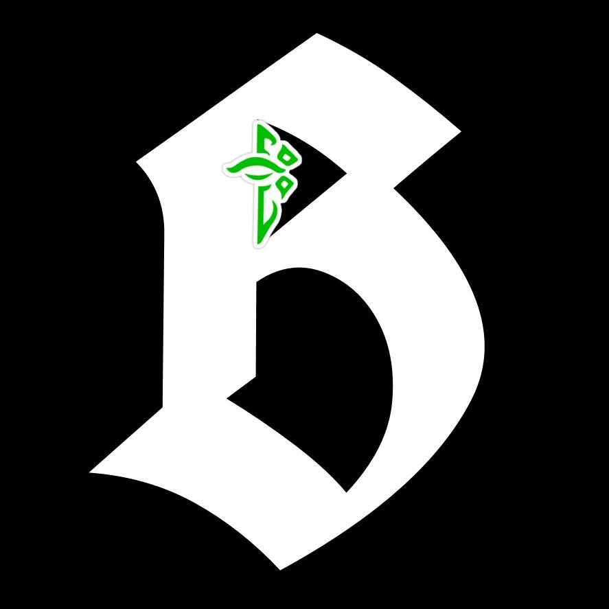 Brixdu24