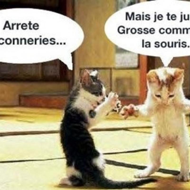 Boulougne