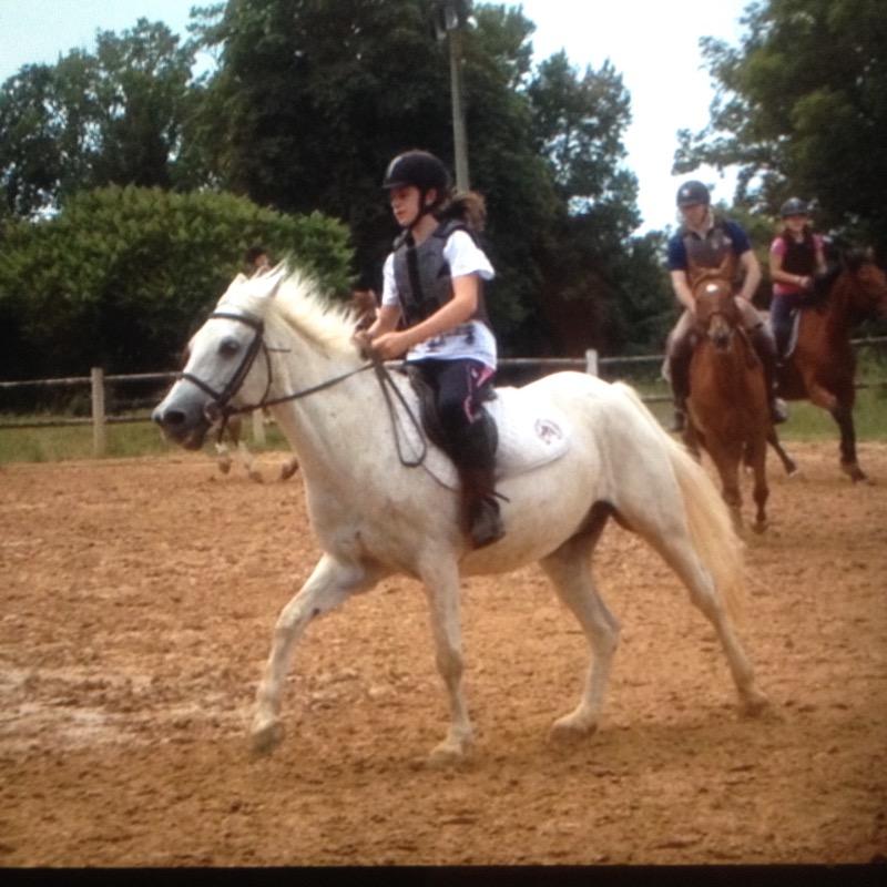 HorseGirl17