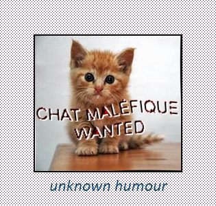 chat_malefique